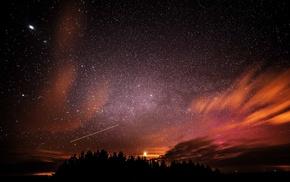 stars, night sky, silhouette, trees