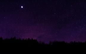 stars, night sky, silhouette