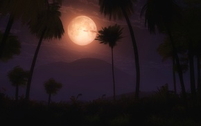 multiple display, palm trees, moon