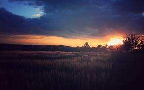 plains, sunset