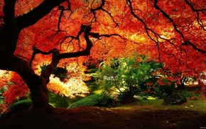 Asia, red, garden, old