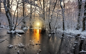 frost, yellow, cold, snow, white, sunlight