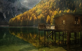forest, nature, reflection, Italy, fall, mountain