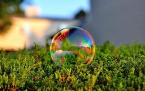 bubbles, nature
