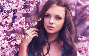 blue eyes, brunette, cherry blossom, girl, model, face