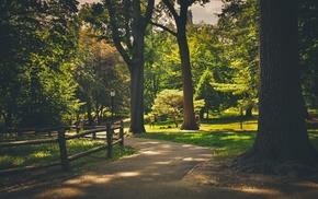 park, trees