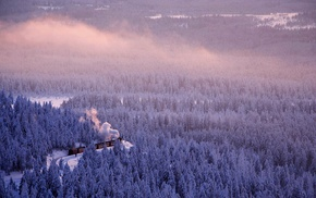 forest, train, snow, landscape, Germany, saxonia