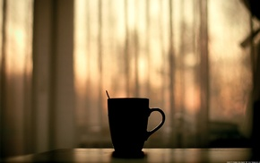evening, cup, mugs