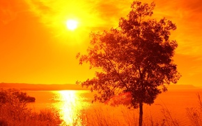 water, orange, lake, trees, landscape, Sun