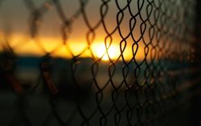 macro, photography, Sun, blurred, fence