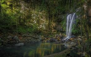 nature, queensland, waterfall, Australia, curtis falls