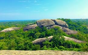 rock, forest, photography, trees, nature, Sri Lanka