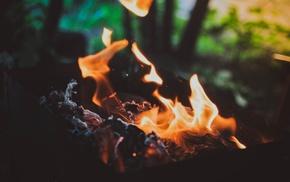 fire, macro