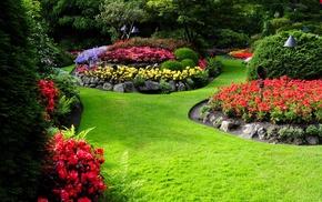 nature, landscape, flowers, garden