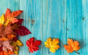 maple leaves, leaves, wood, fallen leaves, red leaves