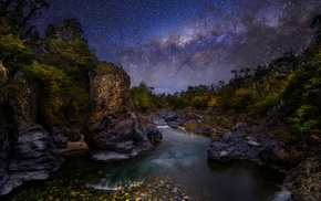 trees, long exposure, galaxy, nature, The Devils Throat, Milky Way