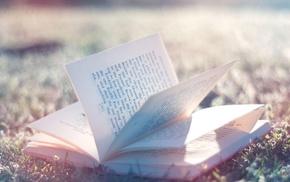 books, depth of field, nature, sunlight, bokeh, photography