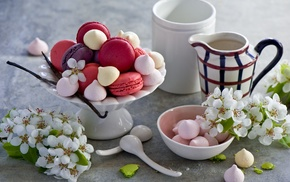 meringue, Macarons, dessert, cookies, food