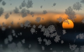 photography, blurred, frost, winter, nature, snow
