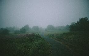 path, bench, mist, landscape
