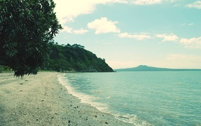 water, beach, photography, coast, trees, sea