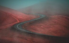 nature, road, photography