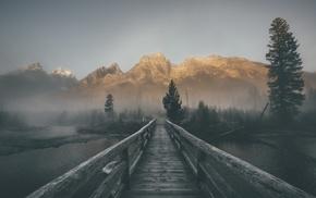 landscape, mist, forest, bridge, mountains