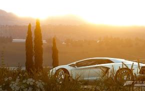 sunset, Forza Horizon 2, Xbox, Forza Hozion, Lamborghini Aventador, white cars
