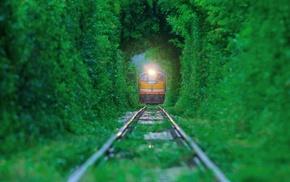 train, nature