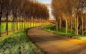 trees, road, landscape, HDR, nature