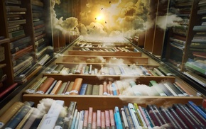 books, birds, worms eye view, photography, clouds, shelves