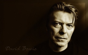 musician, David Bowie, monochrome, looking at viewer