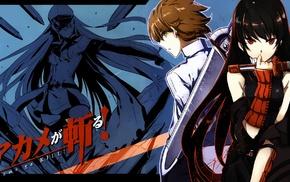 Akame ga Kill, anime boys, Tatsumi, Akame, Esdeath, anime