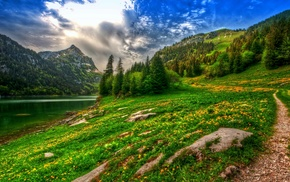 forest, mountains, spring, lake, path, HDR
