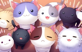 cat, visual novel, Nyan Cafe Macchiato