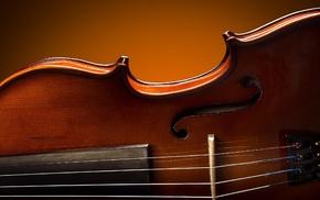 musical instrument, violin
