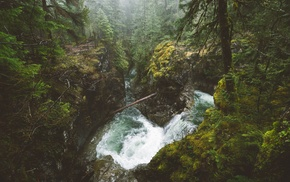 forest, British Columbia, waterfall, mist, Canada, river