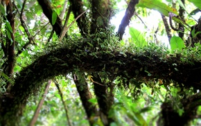 Costa Rica, landscape