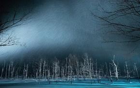 landscape, pond, winter, snow, trees, Japan