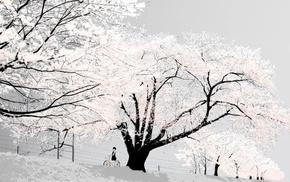 snow, bicycle, trees, winter