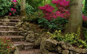 garden, stairs, flowers, plants
