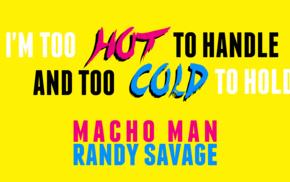 Randy Savage, wrestling, WWE