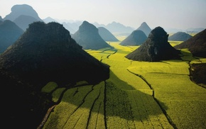 Vietnam, photography, nature, rice paddy, field, mountains