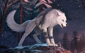 animals, wolf, furry