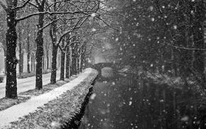nature, monochrome, water, snow, trees, landscape