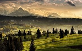 snowy peak, nature, mist, grass, village, Tatra Mountains