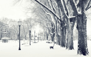 landscape, park, winter, urban, snow, photography