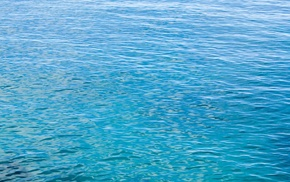 nature, water, sea, photography