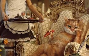 photo manipulation, humor, food, flowers, fishnet stockings, Wealth