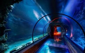 aquarium, underwater, sea, tunnel, HDR